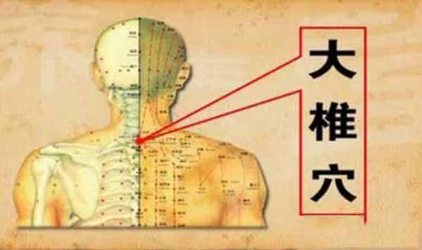 大椎穴的准确位置www.yangshengpu.com