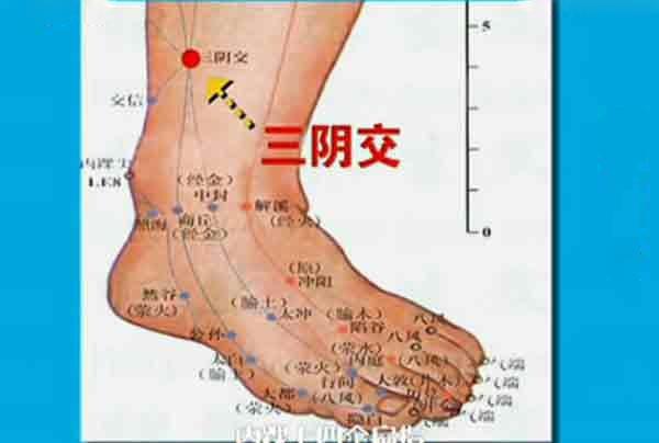 肝经的敲击位置图_三阴交穴位的准确位置图_三阴焦位置图和作用_养生铺