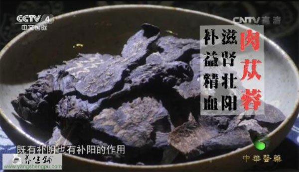 肉苁蓉的作用