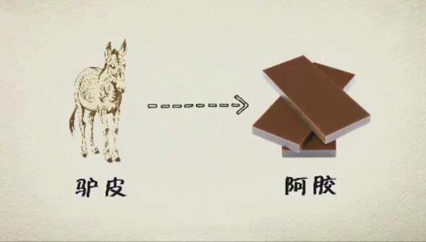 阿胶来源于驴皮